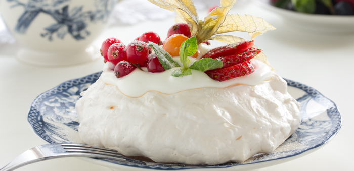 PAVLOVA topimage